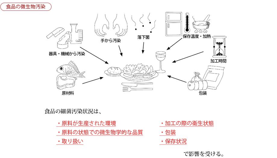 食品の微生物汚染
